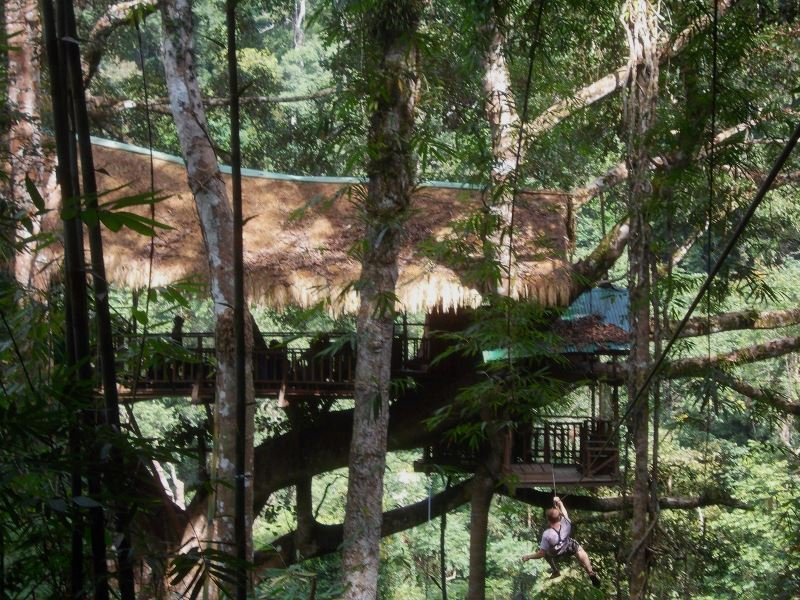 Laos-Gibbon-Experience-Baumhaus-Ankunft