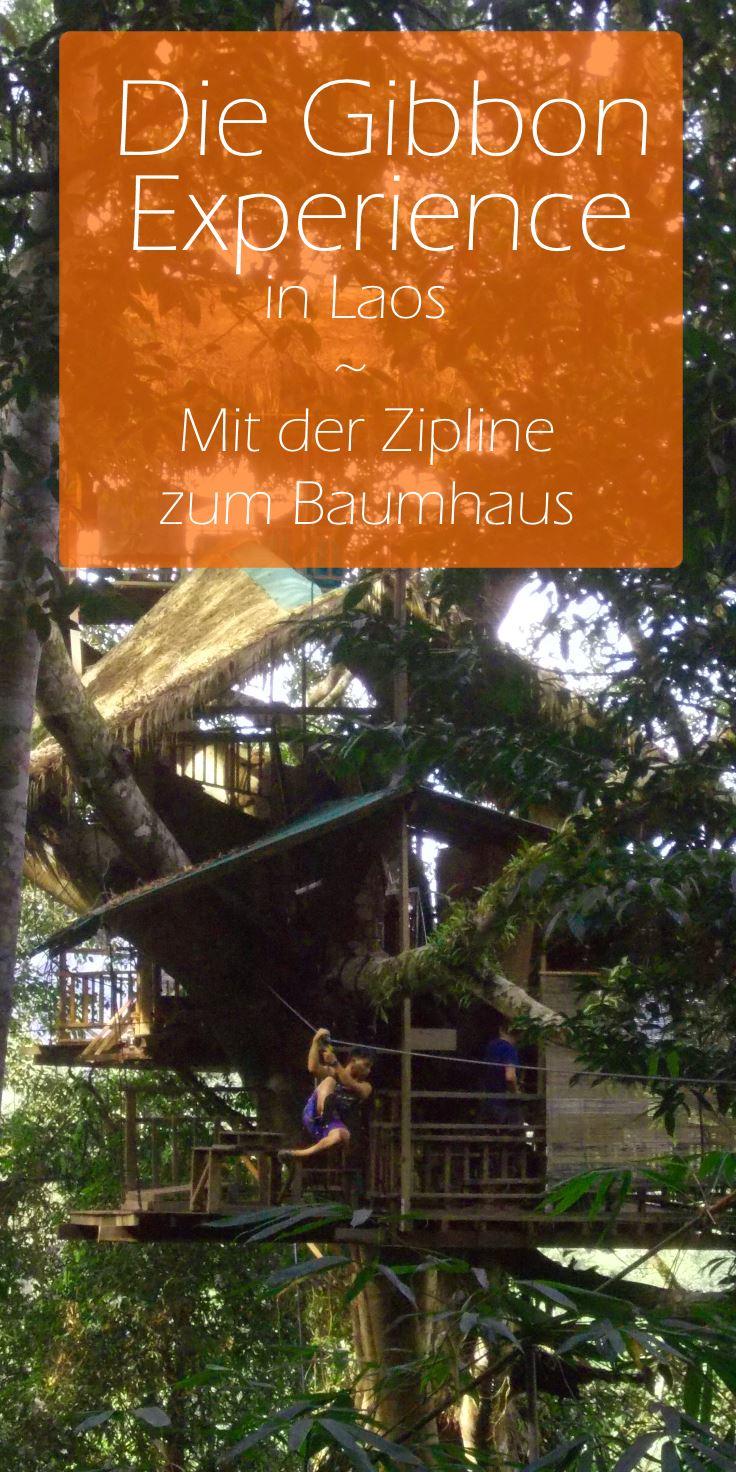 Laos-Gibbon-Experience-Zipline-Baumhaus-pinterest3