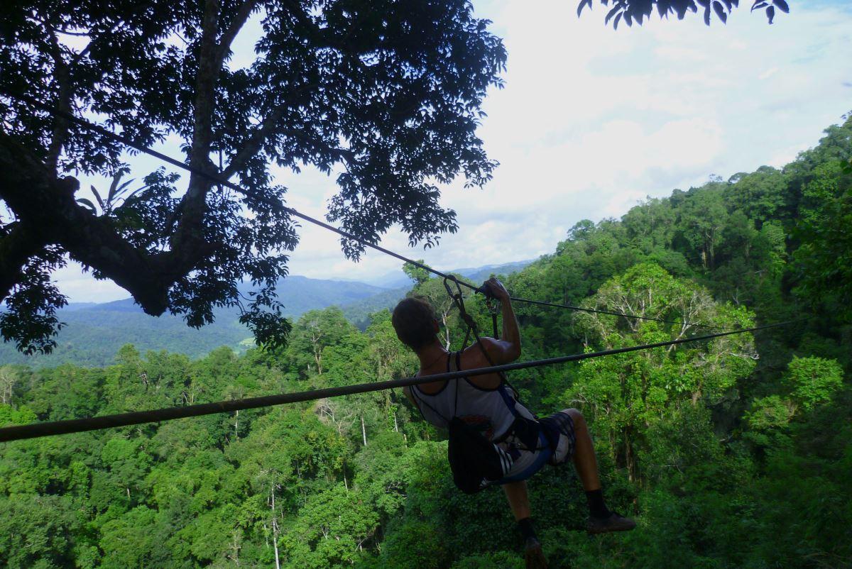 Laos-Gibbon-Experience-Zipline