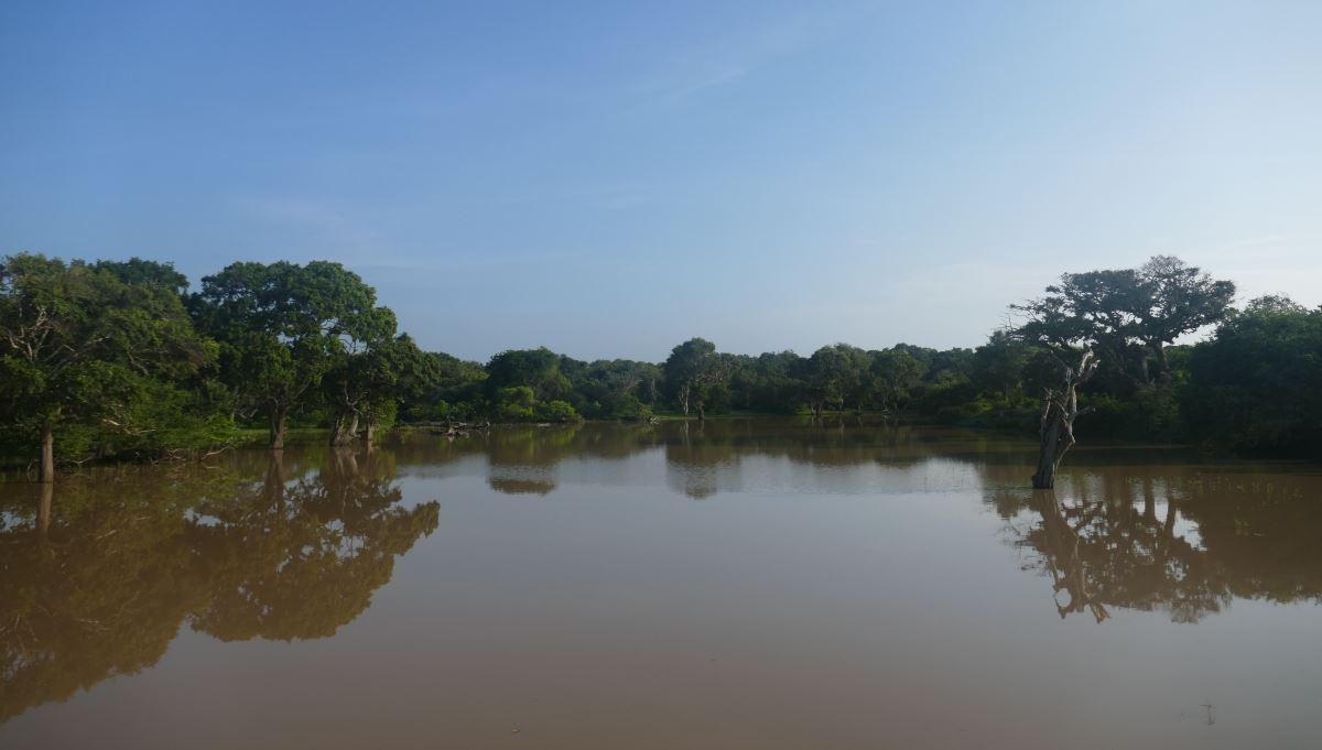 Sri Lanka-Yala-See-1200