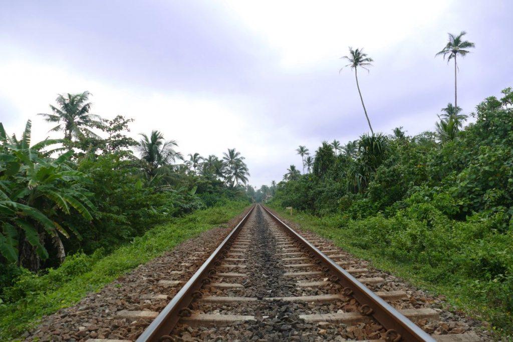 Sri Lanka-Zug-Gleisbett-Palmen