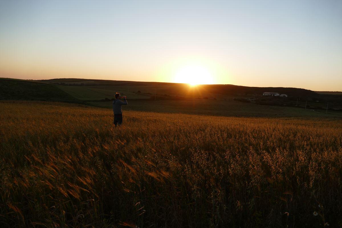 FZ1000 - Sonnenuntergang warm